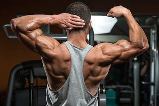10 UNIVERSAL RULES FOR BUILDING MUSCLE!!!