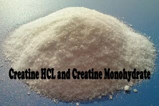 Creatine HCL and Creatine​ Monohydrate