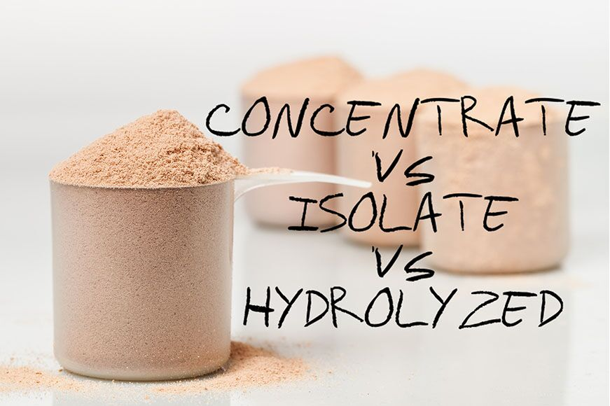 Hydrolyzed vs Isolate vs Concentrate protein